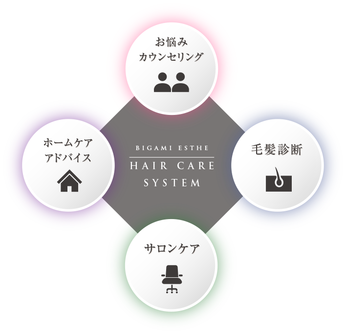 BIGAMI ESTHE HAIR CARE SYSTEM